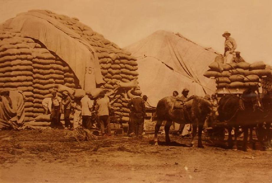 Bolseros en plena actividad luego de la cosecha, cuando clareaba el siglo XX
